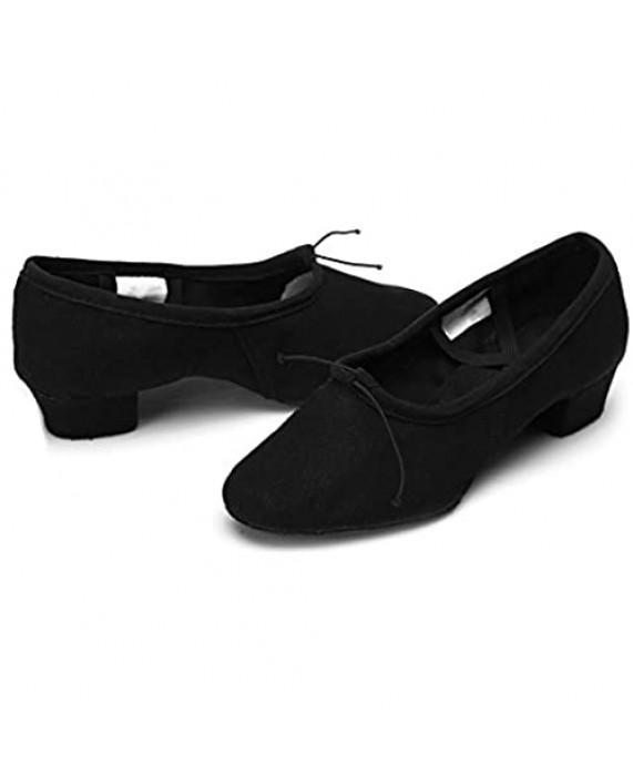 DKZSYIM Women's Latin Dance Shoes Ballroom Performance Shoes Model 101